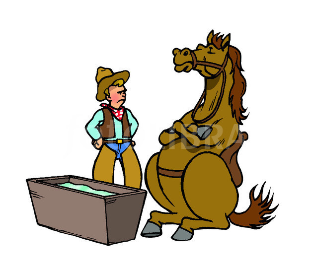 CARTOON YOU CAN TAKE A HORSE TO WATER-ILLUSTRATION